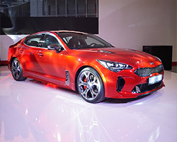 Pickerings - 2017 Kia Stinger